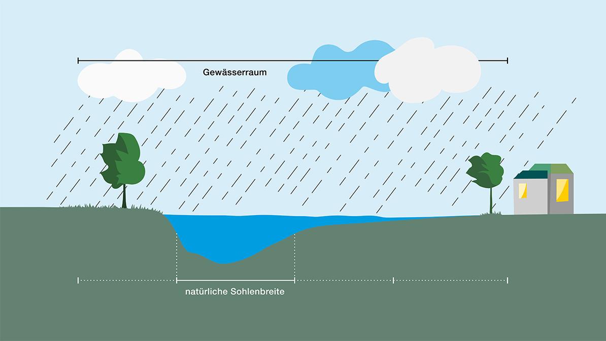 River Profile: River and riverine zone